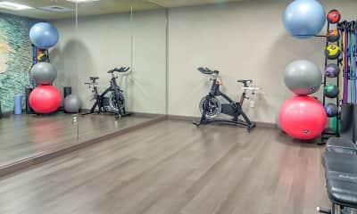 Fitness Weight Room, Elm Row, 2