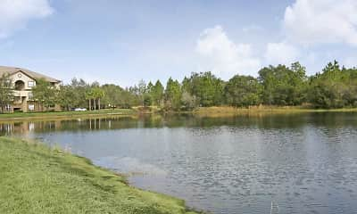 Lake, The Promenade at Tampa Palms, 2