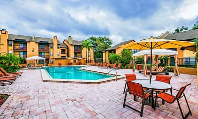 Pool, Waterstone at Carrollwood, 1