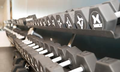 Fitness Weight Room, The Whit, 2