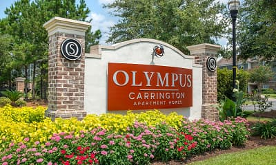 Olympus Carrington, 2