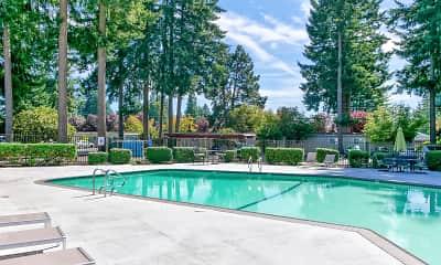 Pool, Capitol Club, 0
