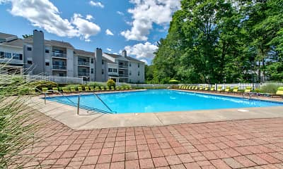 Pool, Northwoods, 1