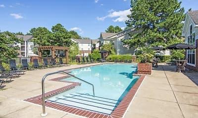 Pool, Arboretum Place, 0