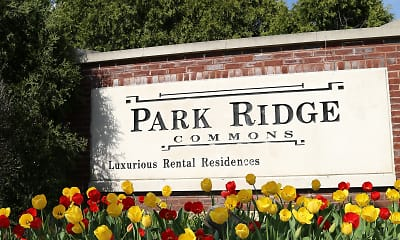 Park Ridge Commons, 2