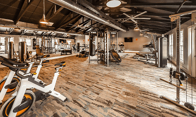 Fitness Weight Room, The Meridian South, 0