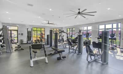 Fitness Weight Room, Aventura Harbor, 1