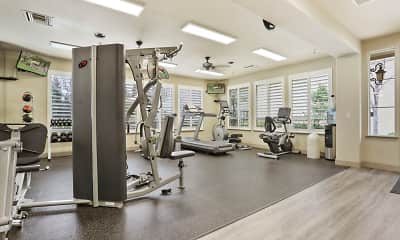 Fitness Weight Room, Irongate, 2