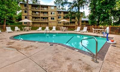 Pool, Forest Village, 0