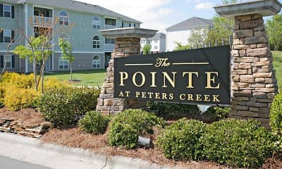 Building, The Pointe at Peters Creek, 2
