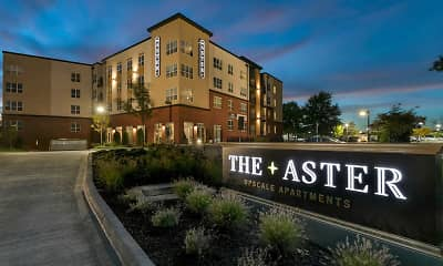 The Aster, 0