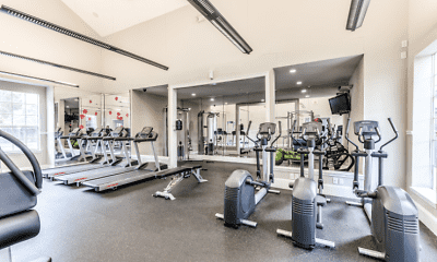 Fitness Weight Room, The Promenade Champions Forest, 2