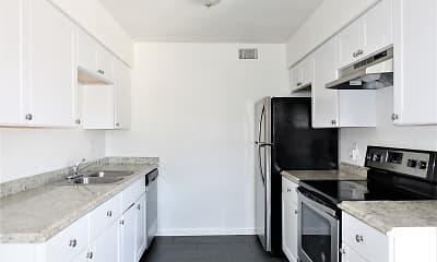 Kitchen, Sandpainter, 1