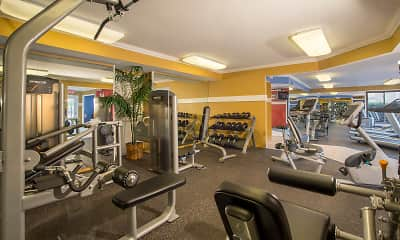Fitness Weight Room, Saddle Creek, 2