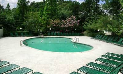 Pool, Roper Mountain Woods, 2