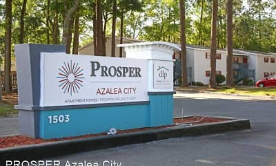 PROSPER Azalea City, 1