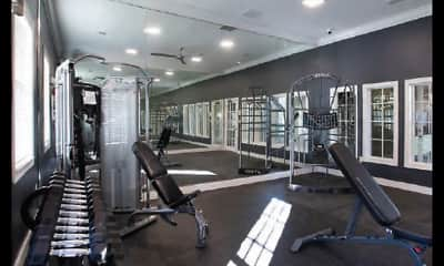 Fitness Weight Room, The Belmont, 1