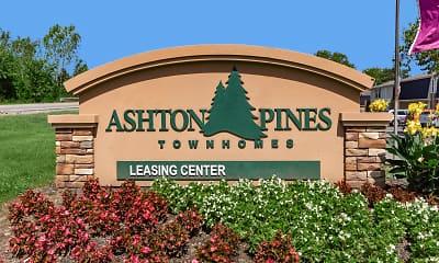 Ashton Pines, 2