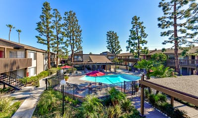 Pool, Westmont Apartment Homes, 1