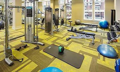 Fitness Weight Room, Palette at Arts District, 2