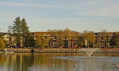 Edgewater at Virginia Lake, 2