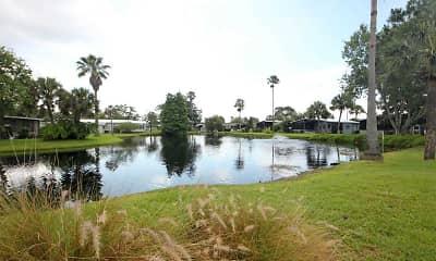 Lake, Royal Palm Village, 0