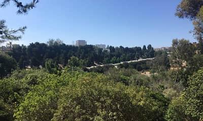 View, Amigos, 1