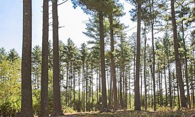 Pine Ridge Estates, 2