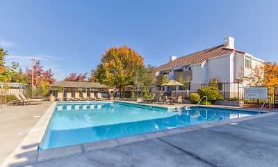 Pool, Capri Creek Apartments, 0