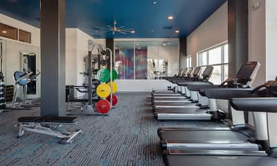 Fitness Weight Room, CoLab, 2