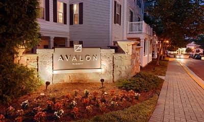 Avalon Russett, 2