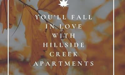 Hillside Creek, 2