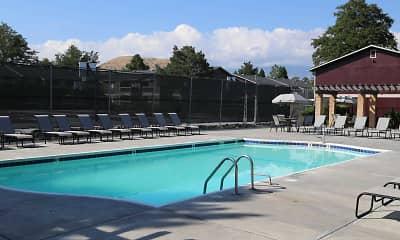 Pool, Rosewood Park, 1