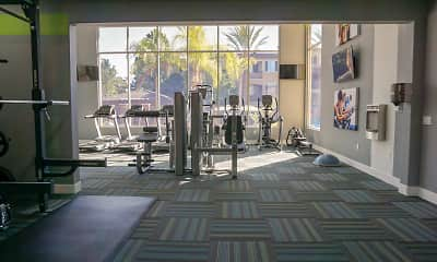 Fitness Weight Room, Avion At Spectrum, 2