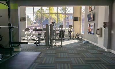 Fitness Weight Room, Avion At Spectrum, 2