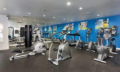 Fitness Weight Room, Addison At Hampton, 1