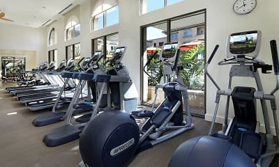 Fitness Weight Room, Villas at Playa Vista - Montecito, 2