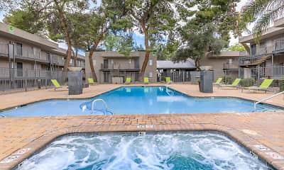 Pool, Treehouse, 1