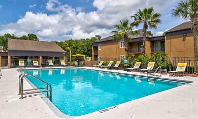 Pool, The Palms at Ortega, 0