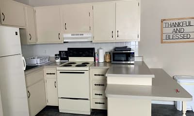 Kitchen, Sycamore Terrace, 1