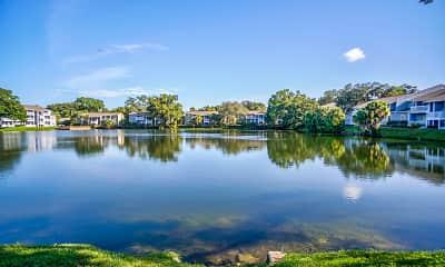 Lake, The Ava, 0