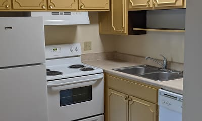 Kitchen, Slopes of Aspen, 1