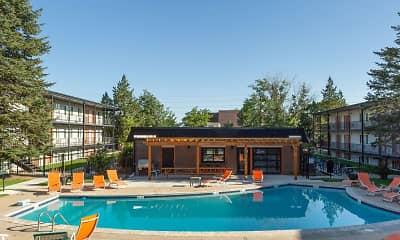 Pool, The Lodge, 1