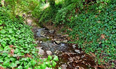 Landscaping, Redwood Creek, 2