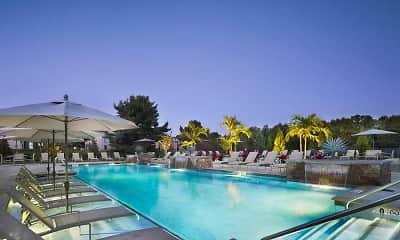 Pool, Blue Bell Villas, 0