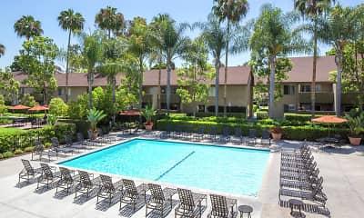 Pool, Park West, 1