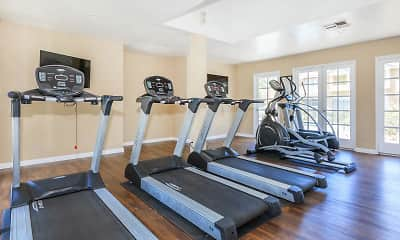 Fitness Weight Room, The Springs Apartment Homes, 2
