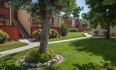 Landscaping, Brighton Park Apartments, 1