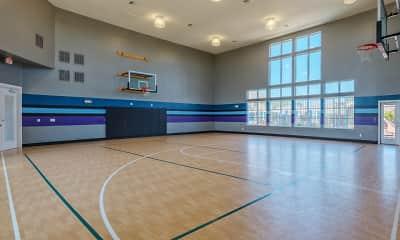 Fitness Weight Room, Arwen Vista, 2
