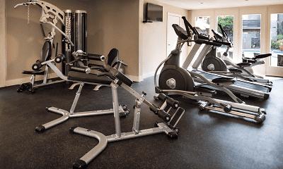 Fitness Weight Room, Elan Avante, 2